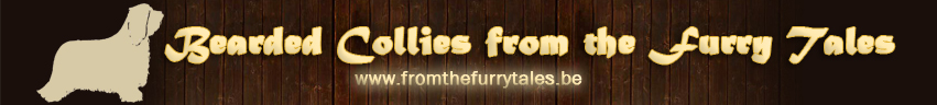 fromthefurrytales banner